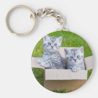 Young cats in cartboard box on grass basic round button keychain