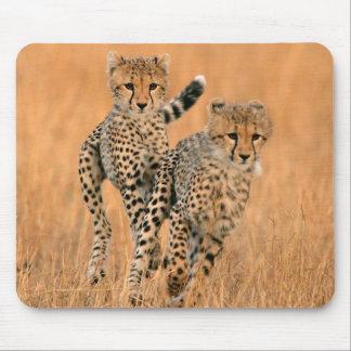 Young Cheetahs (Acinonyx Jubatus) Running Mouse Pad
