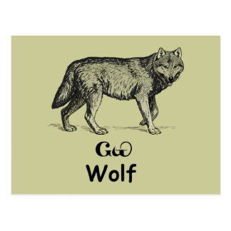Young Cherokee Wolf Postcard