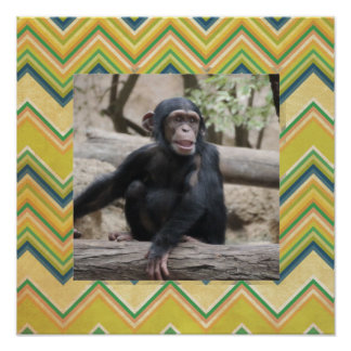 young chimpanzee 02 poster