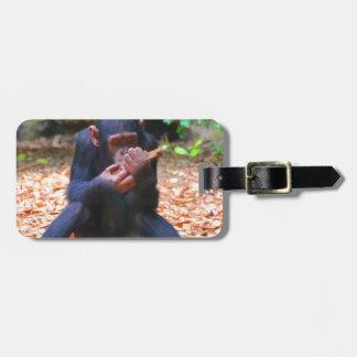 young chimpanzee 03 luggage tag