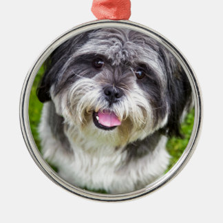 Young dog looking up Silver-Colored round ornament