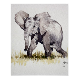 Young Elephant Print