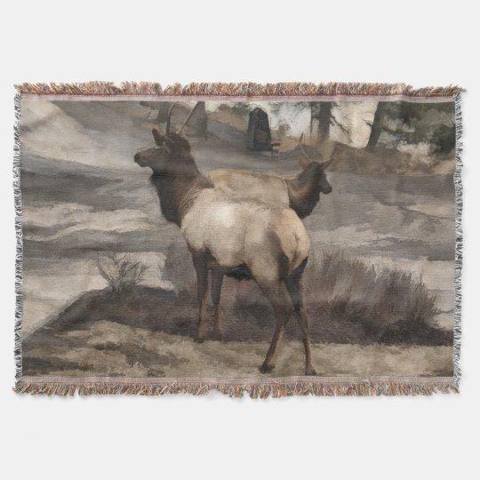 Young Elk Bucks   -  Banff Alberta Throw Blanket