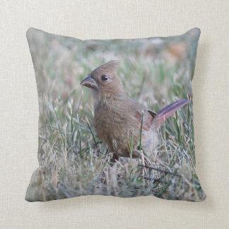 Young female cardinal throw pillow