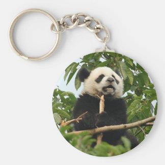Young giant panda - key chain