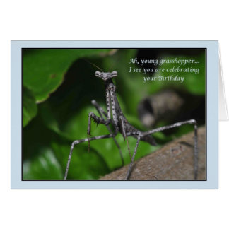 Young grasshopper praying mantis Birthday kung fu Card