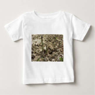 Young green asparagus sprouting from the ground baby T-Shirt