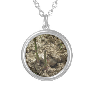 Young green asparagus sprouting from the ground silver plated necklace