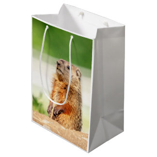Young Groundhog Medium Gift Bag