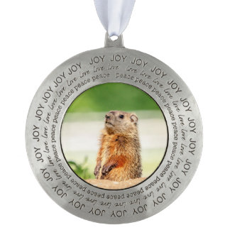 Young Groundhog Pewter Ornament
