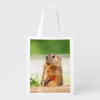 Young Groundhog Reusable Grocery Bag