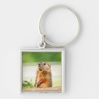 Young Groundhog Silver-Colored Square Keychain