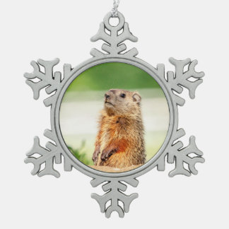 Young Groundhog Snowflake Pewter Christmas Ornament