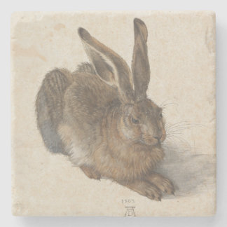 Young Hare by Albrecht Durer Stone Coaster
