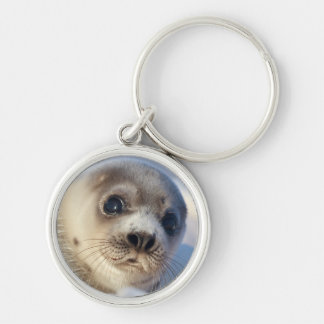 Young harp seal starting to shed its coat Silver-Colored round keychain