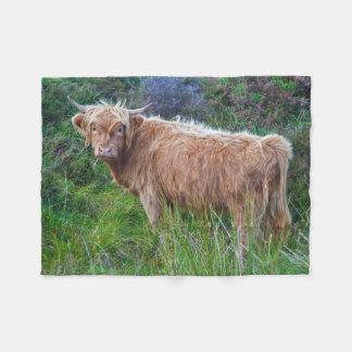 Young Highland Cow Fleece Blanket