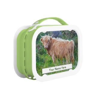 Young Highland Cow Lunch Box (Enter Your Name)