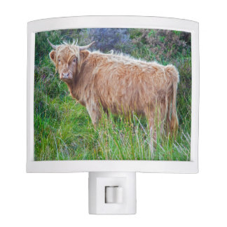 Young Highland Cow Night Light