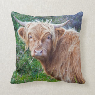 Young Highland Cow Pillow
