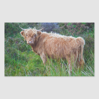 Young Highland Cow Sticker