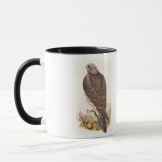 Young Iceland Falcon Gould Birds of Great Britain Mug