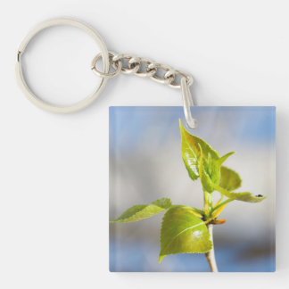 Young leaves keychain