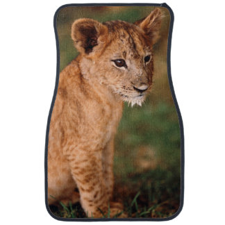 Young lion sitting car liners