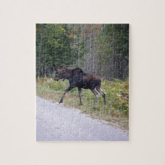 Young Moose About to Cross Road Jigsaw Puzzle