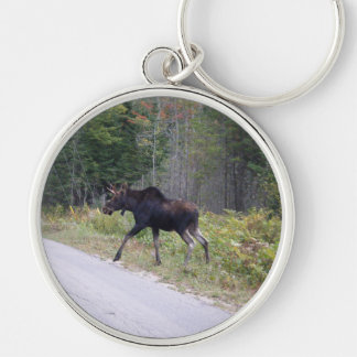 Young Moose Keychain