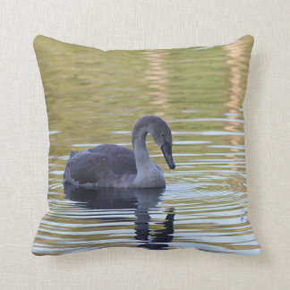 Young mute swan throw pillow