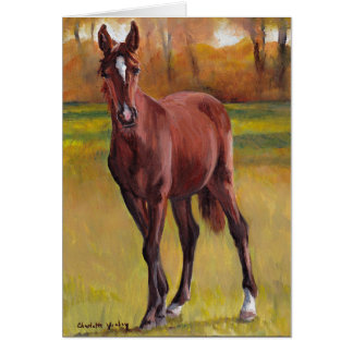 """Young One"" Horse Art Greeting Card"