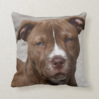 Young Pit Bull Puppy Throw Pillow