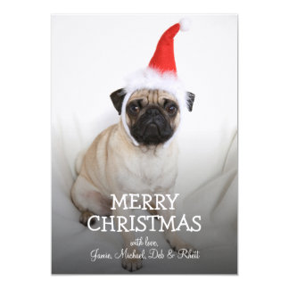 Young pug wearing Santa hat Card