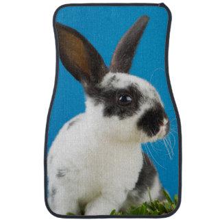 Young Rex rabbit Car Carpet