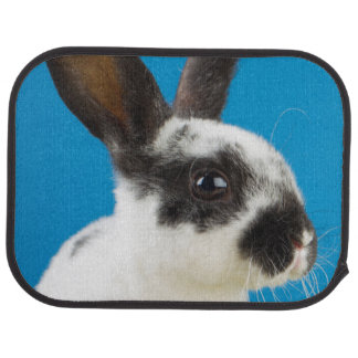 Young Rex rabbit Car Floor Carpet