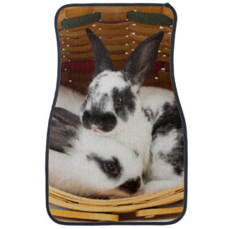 Young Rex rabbits in Easter basket 2 Car Mat