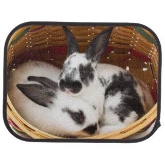 Young Rex rabbits in Easter basket 2 Floor Mat