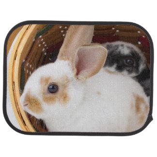 Young Rex rabbits in Easter basket Floor Mat