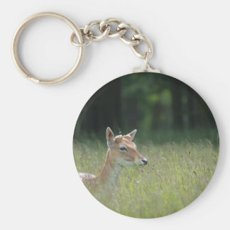 Young Richmond Park deer Keychain