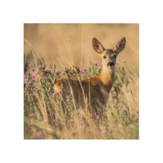 Young Roe Deer in Meadow Wood Wall Art