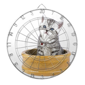 Young silver tabby cat sitting in wooden bowl dartboard