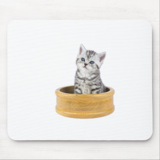 Young silver tabby cat sitting in wooden bowl mouse pad