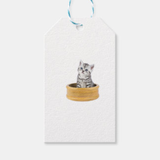 Young silver tabby cat sitting in wooden bowl pack of gift tags