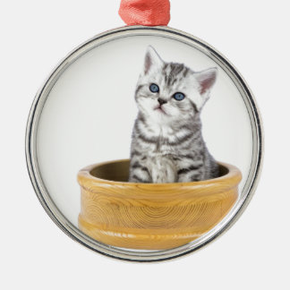 Young silver tabby cat sitting in wooden bowl Silver-Colored round ornament