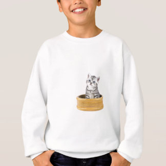 Young silver tabby cat sitting in wooden bowl sweatshirt
