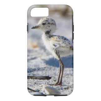 Young Snowy Plovers (Charadrius alexandrinus) iPhone 7 Case