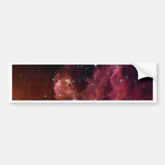 Young Stars Emerge from Orion's Head Bumper Sticker