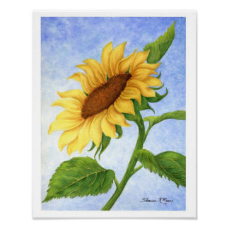 Young Sunflower - Print