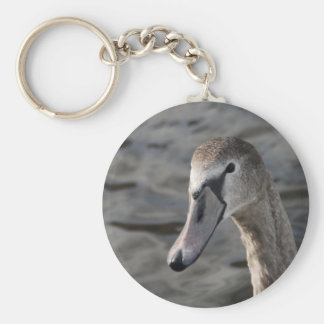 Young swan basic round button keychain